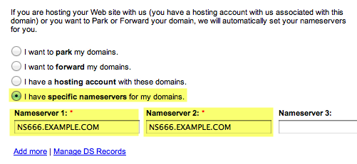 a screenshot of the dns form fields