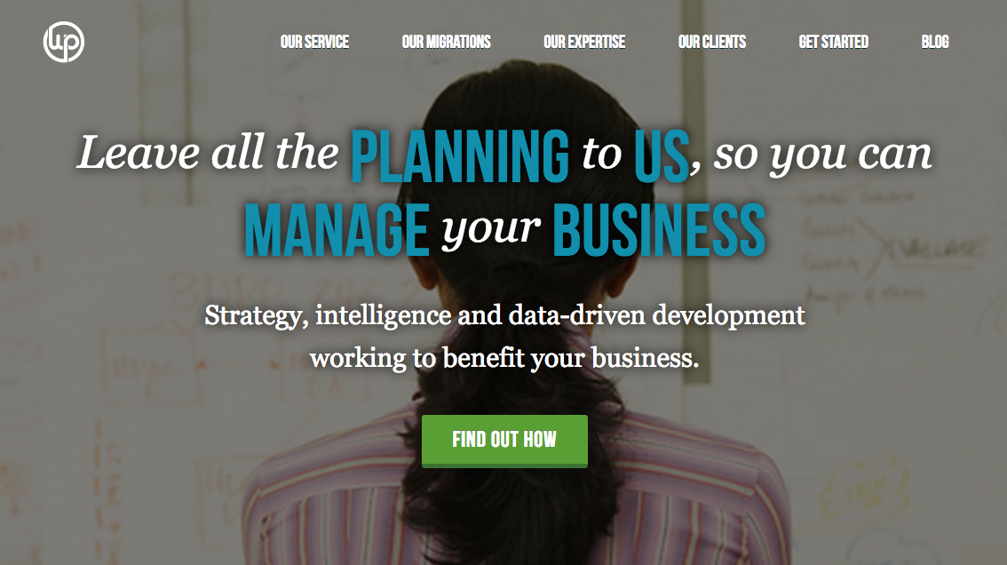WordPress business management and growth planning.